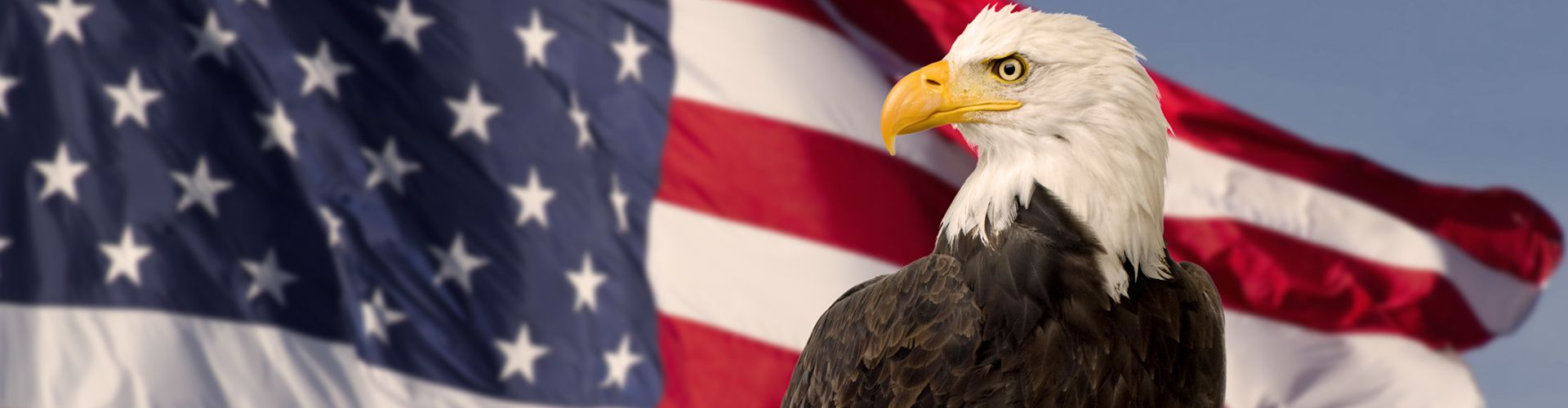 image of eagle in front of american flag